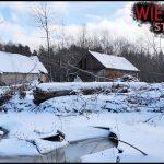 Opuszczony dom w środku lasu pośród bagien | Urbex #33 | Wietrzyk Studio