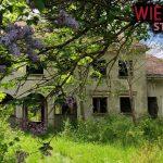 Opuszczona willa milionera na pustkowiu | Urbex 44 | Wietrzyk Studio