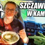 🍃 ZUPA SZCZAWIOWA w kamperze: PROSTY i SZYBKI PRZEPIS na zupę ze świeżego szczawiu.